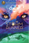 Cover image for The Storm Runner by J.C. Cervantez